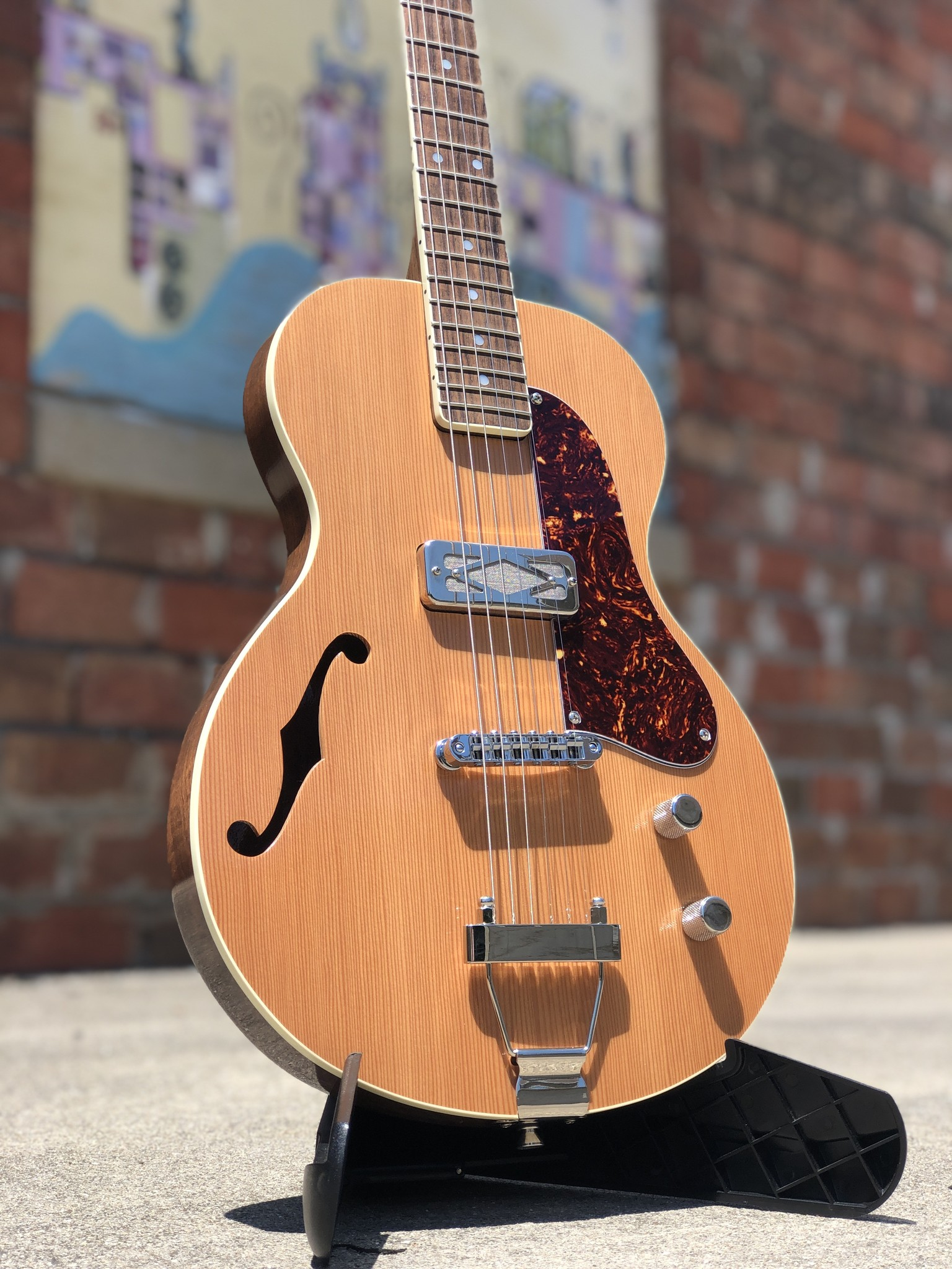 Ness Lutherie Hilldale-2