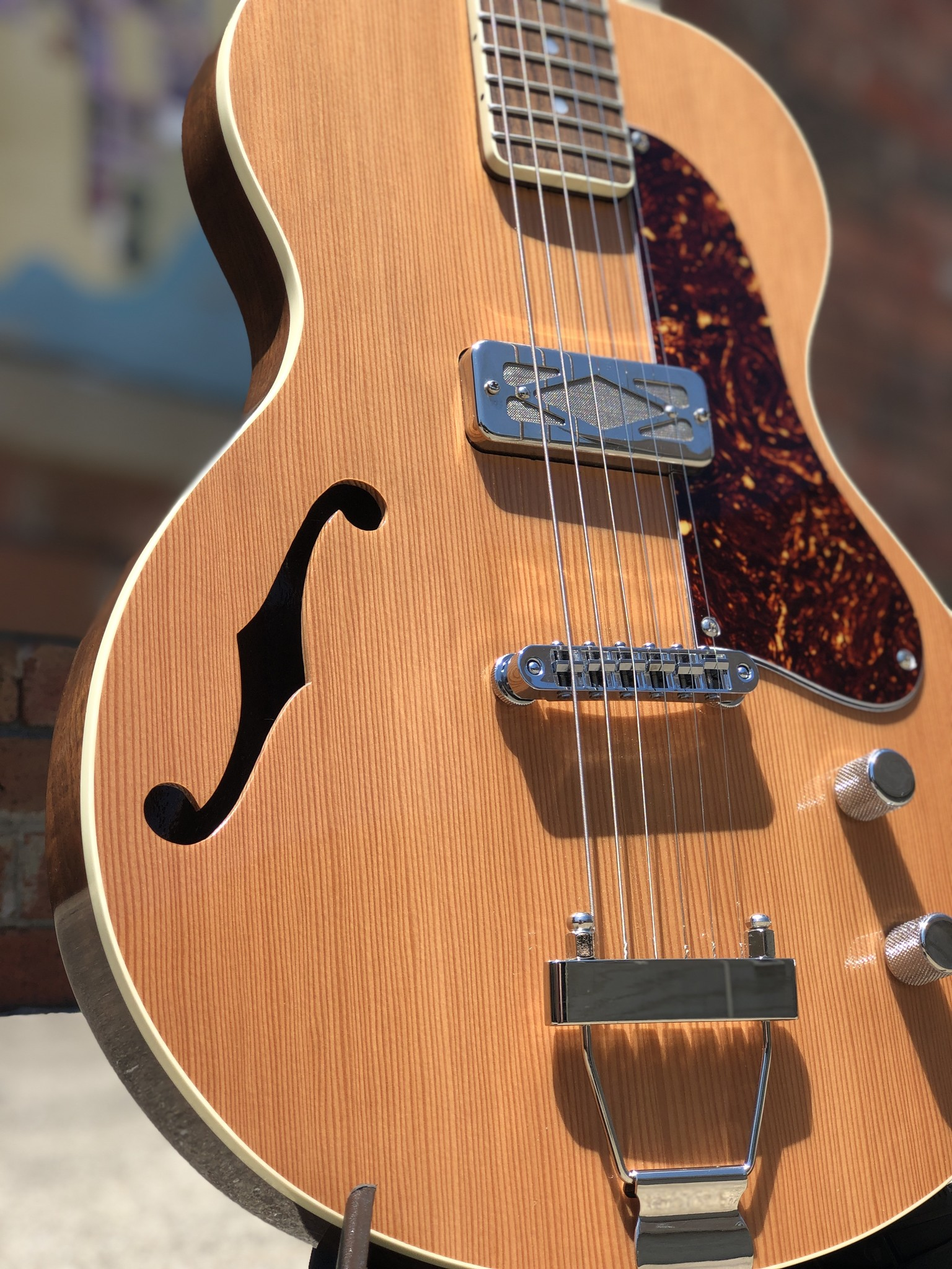 Ness Lutherie Hilldale-3
