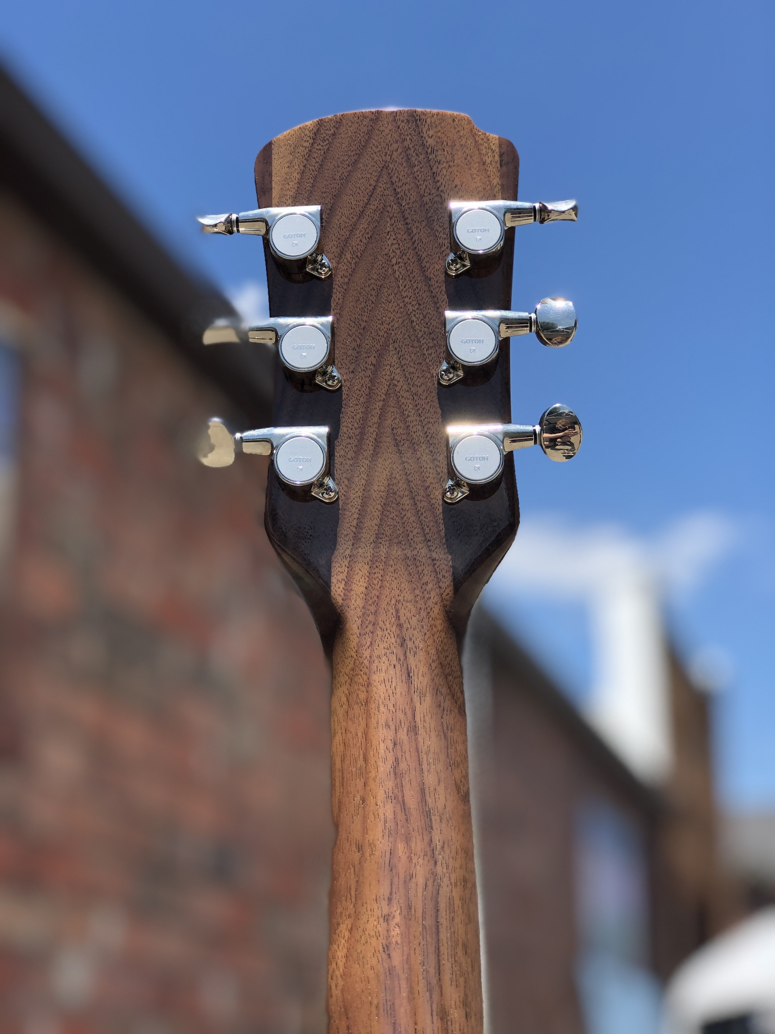 Ness Lutherie Hilldale-6