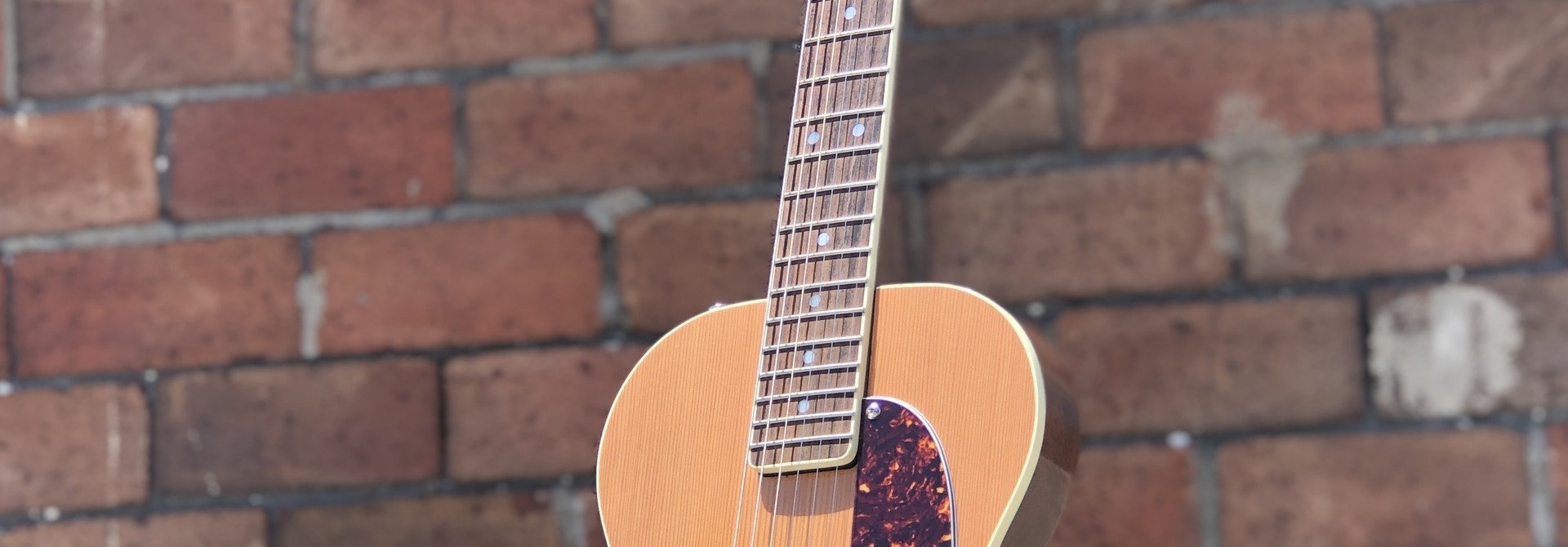 Ness Lutherie Hilldale