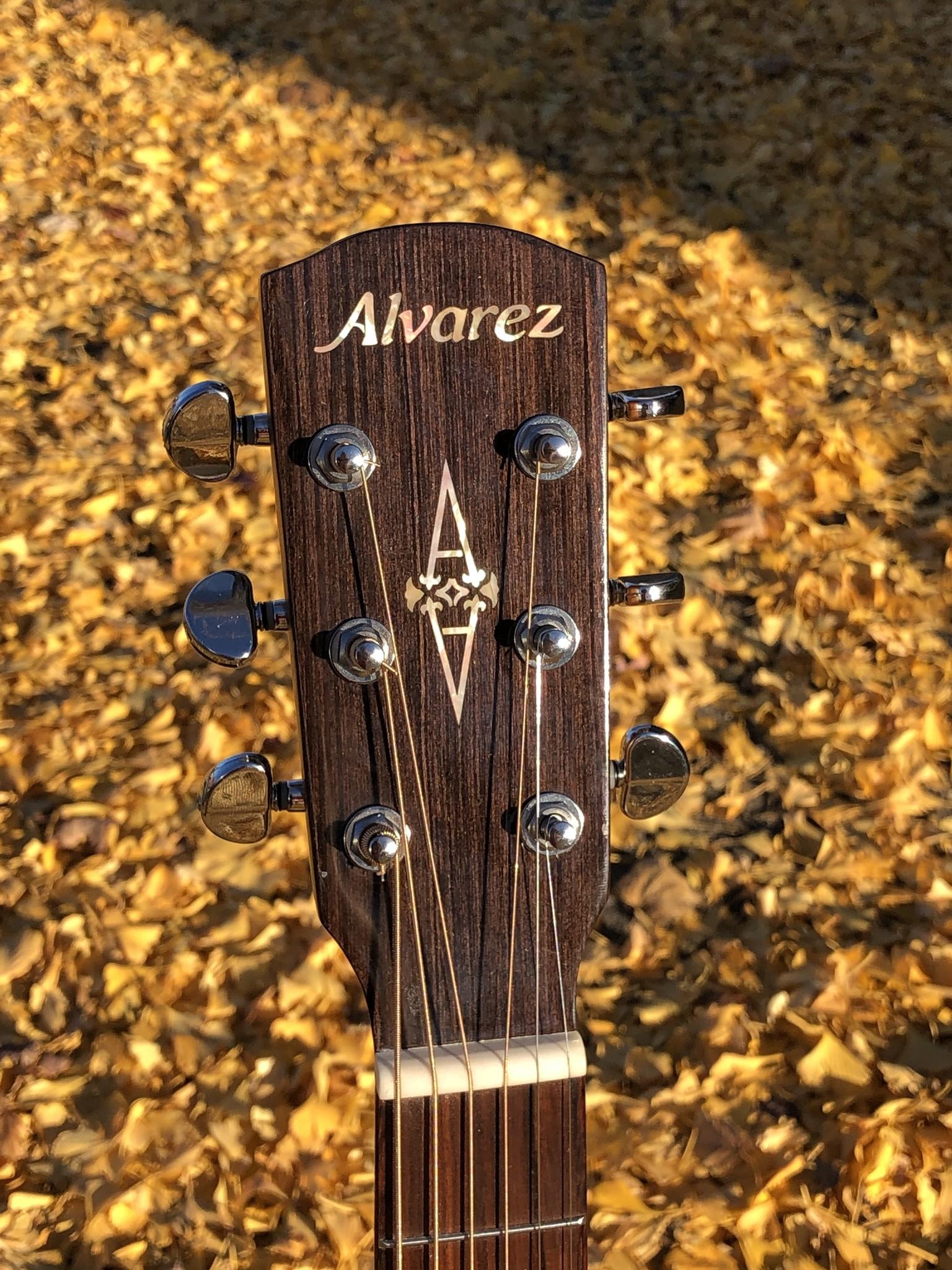Alvarez AGW700CEAR Acoustic Electric-6