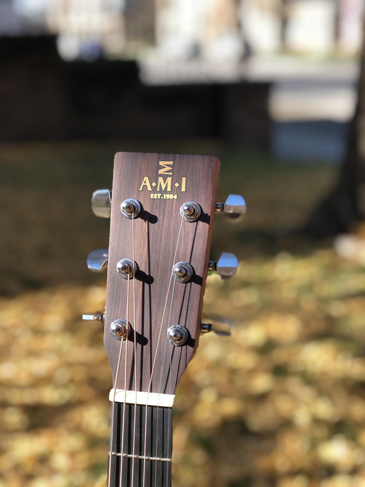AMI DMC-1STE w/Fishman Isys+-4