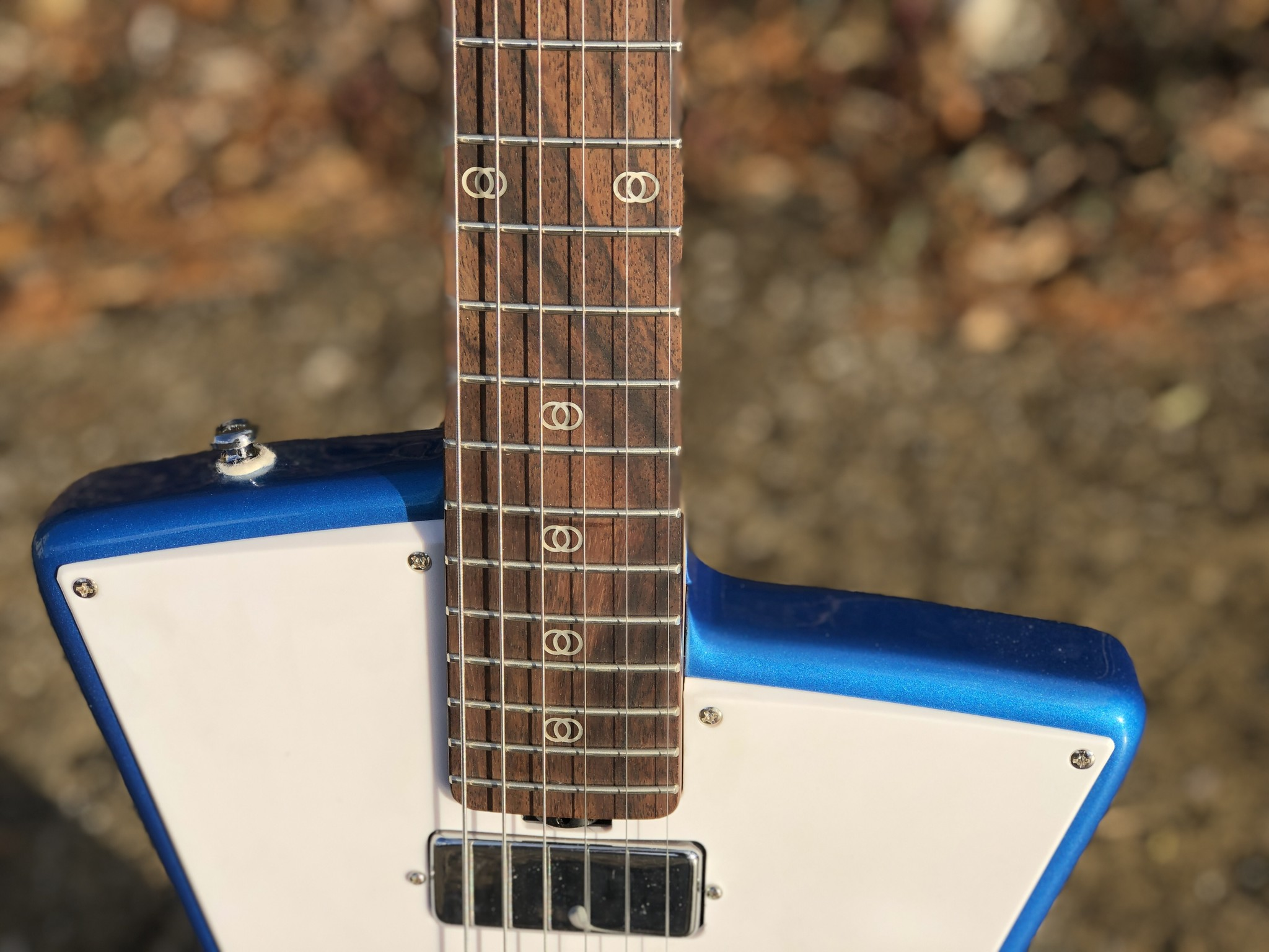 Sterling by Music Man St. Vincent w/ ProRockGear Rect. Bass Case-6