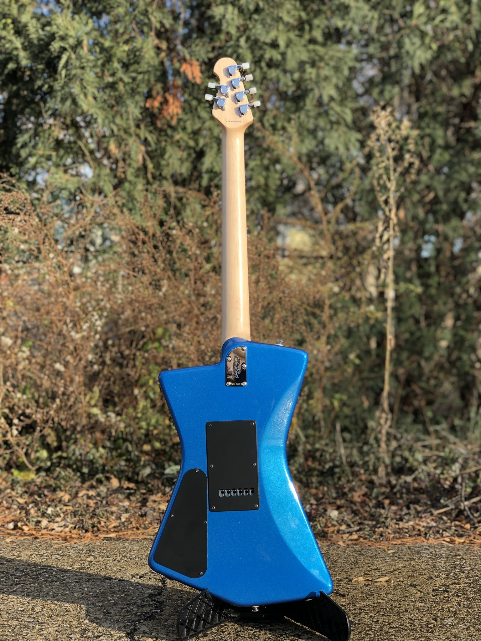 Sterling by Music Man St. Vincent w/ ProRockGear Rect. Bass Case-11