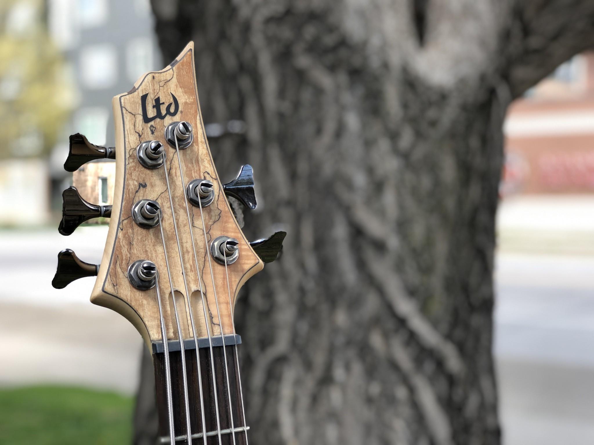 LTD by ESP B-206SM 6-string Bass-5