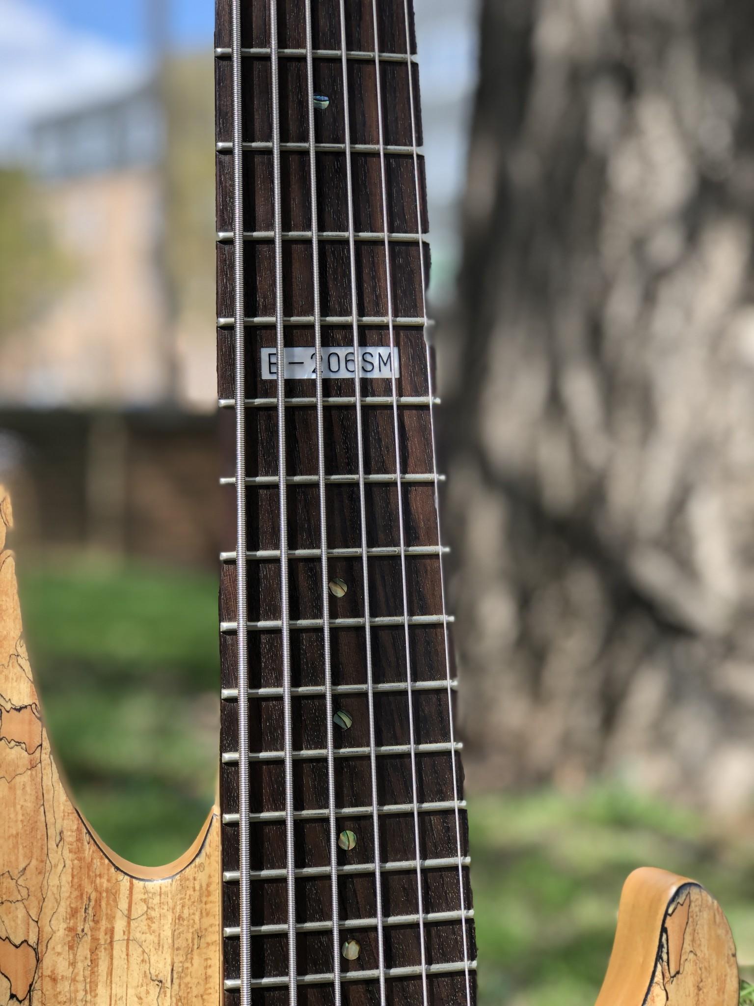 LTD by ESP B-206SM 6-string Bass-3