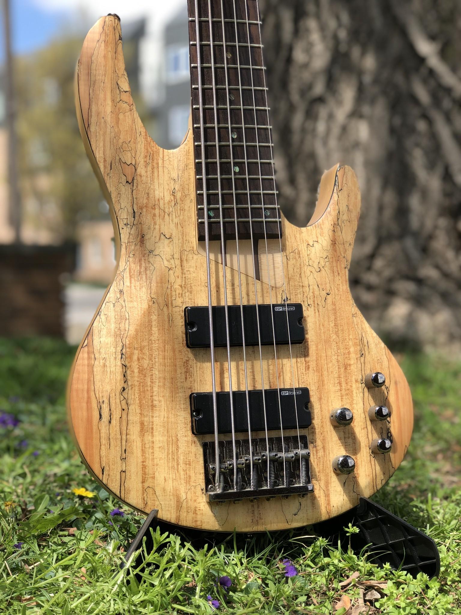 LTD by ESP B-206SM 6-string Bass-2