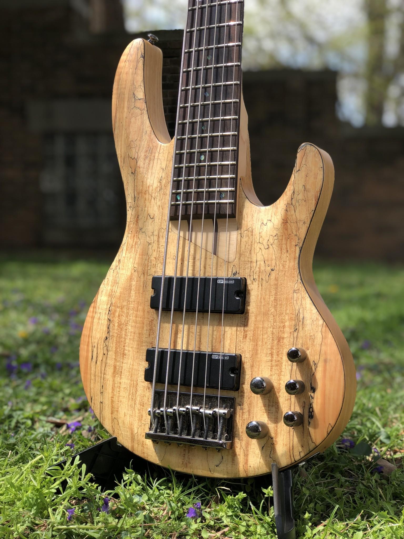 LTD by ESP B-206SM 6-string Bass-4