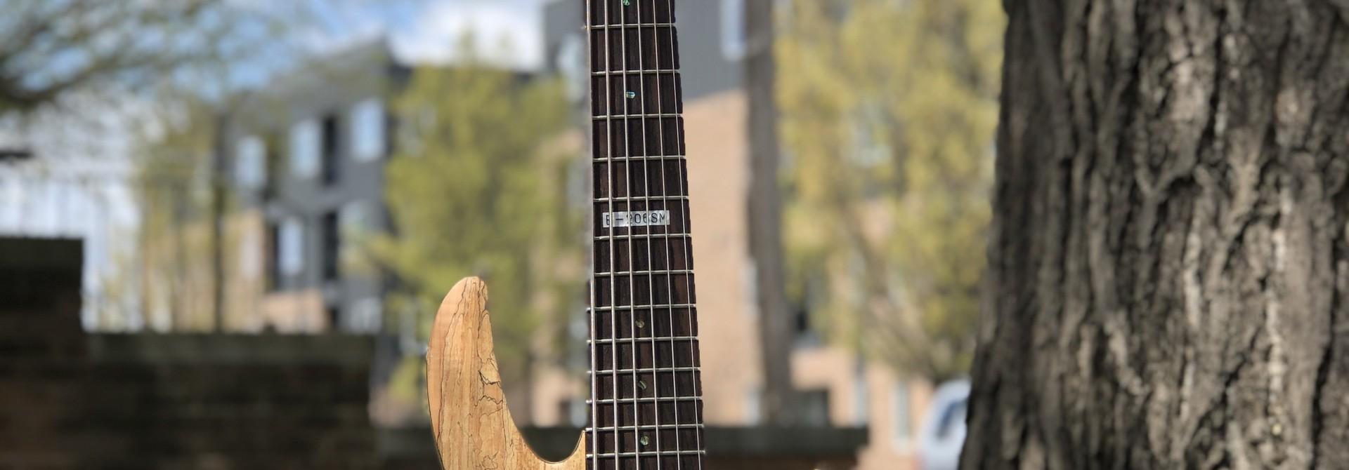 LTD by ESP B-206SM 6-string Bass