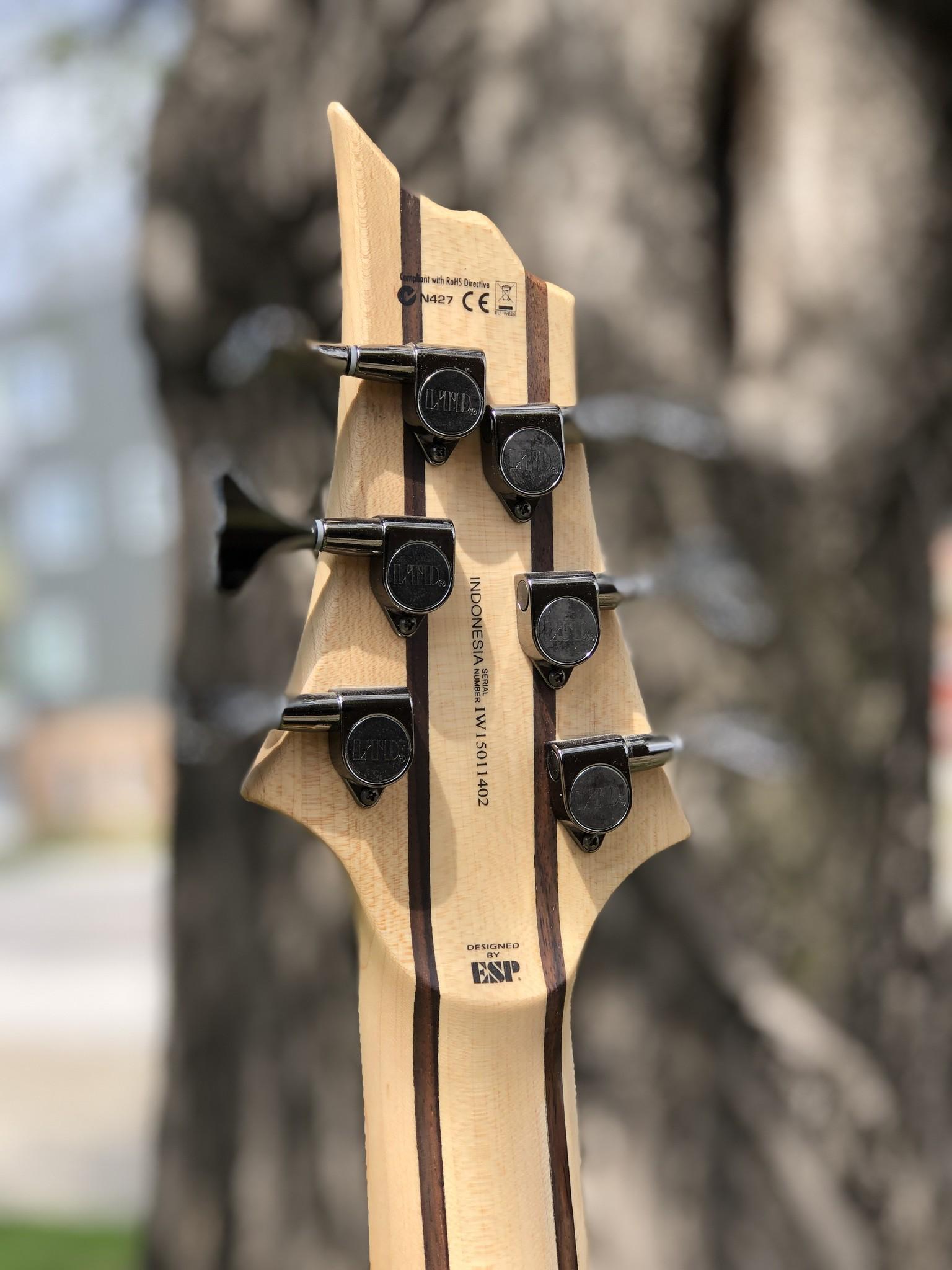 LTD by ESP B-206SM 6-string Bass-6
