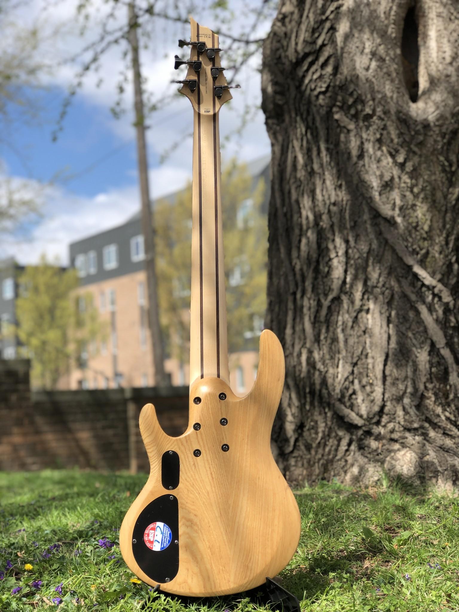 LTD by ESP B-206SM 6-string Bass-7