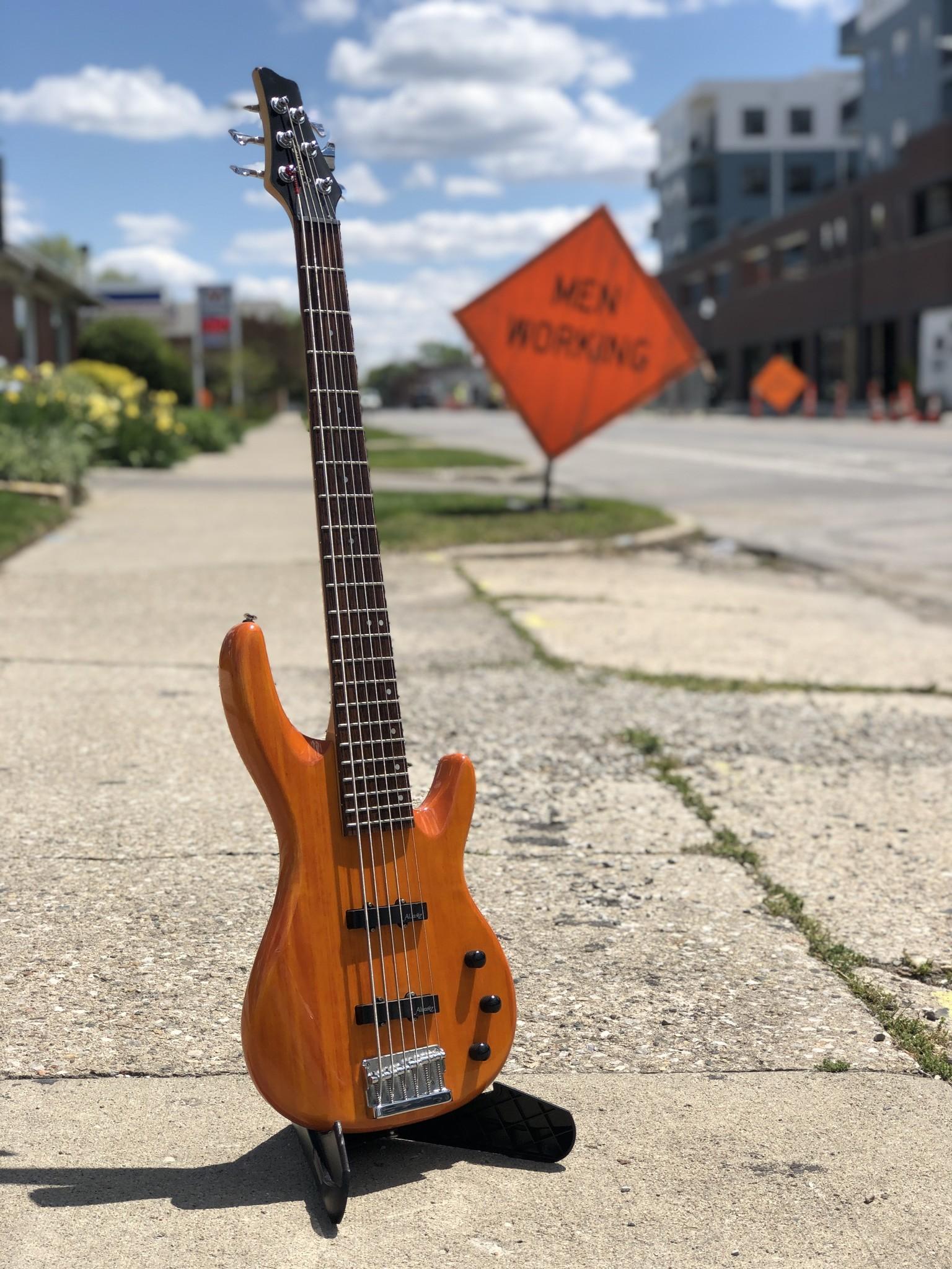 Alvarez 6-String Bass-1