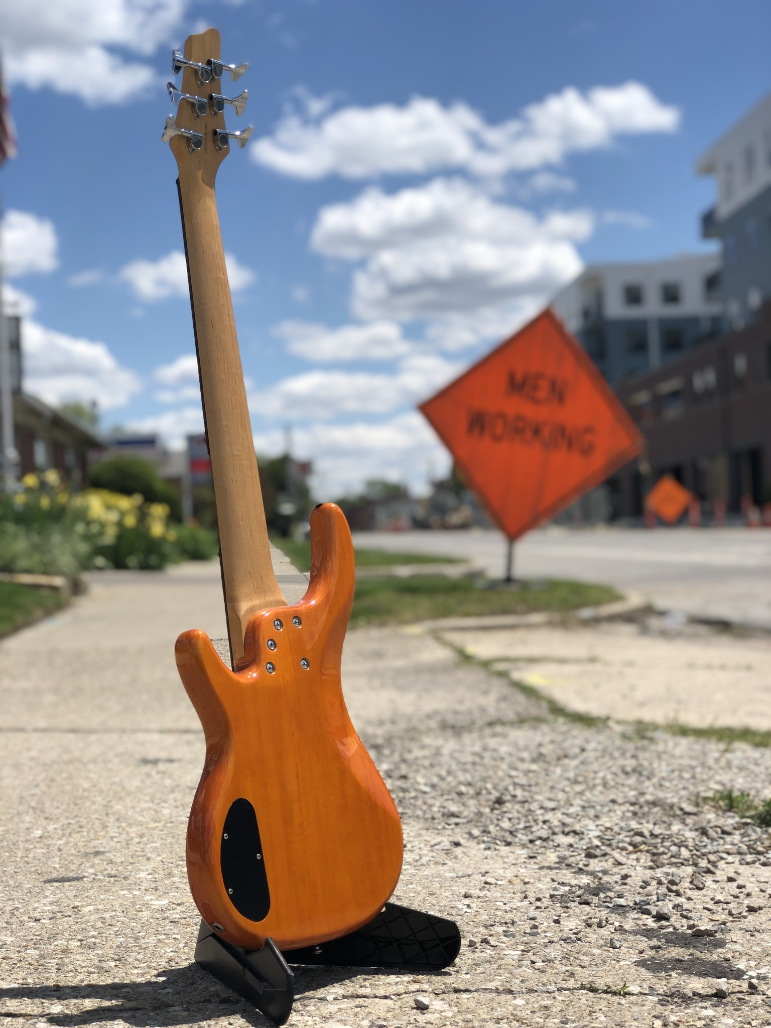 Alvarez 6-String Bass-6