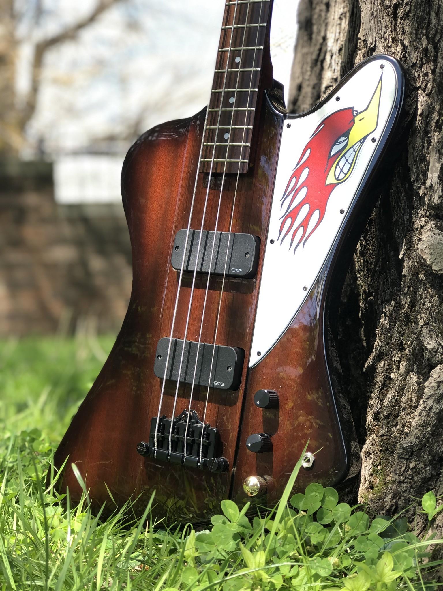 "Epiphone Thunderbird Bass ""The Pecker"" w/ EMG pickups-2"
