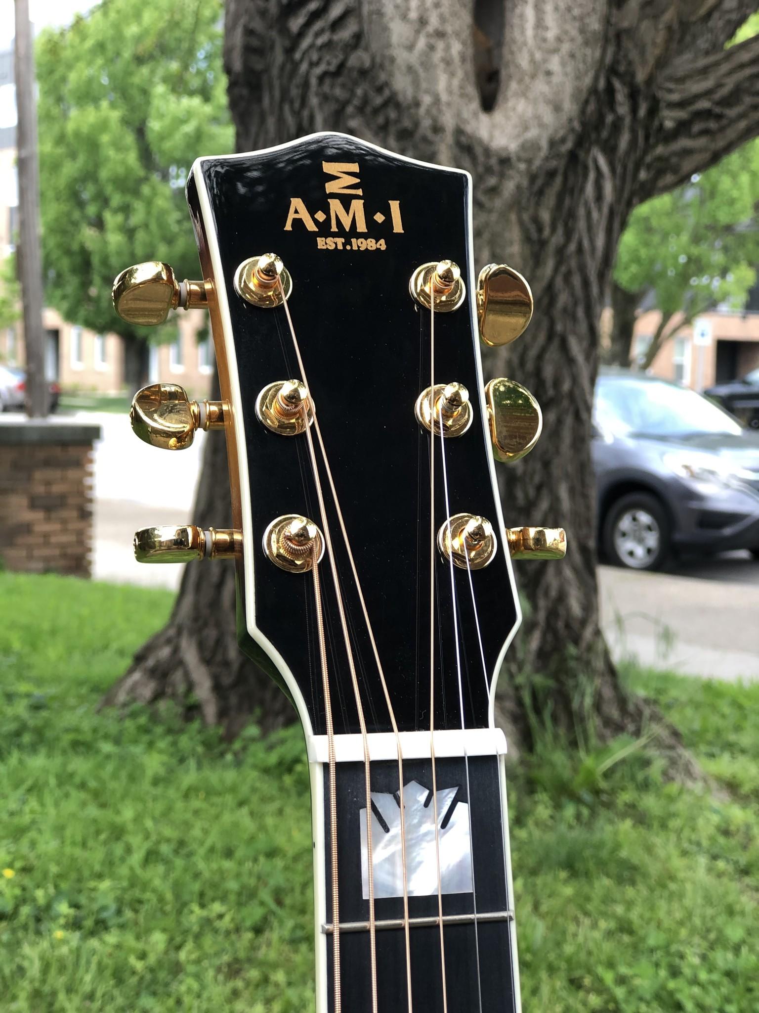 AMI GJA-AG200 Jumbo Acoustic/Electric-5