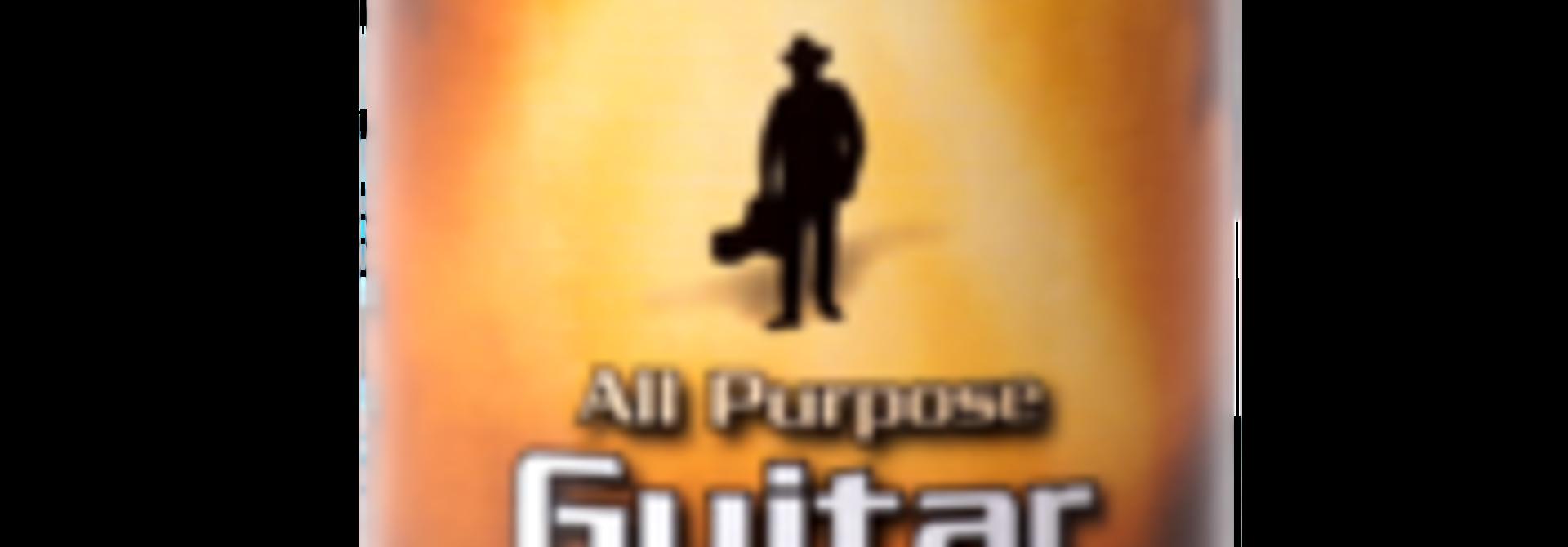 Music Nomad  Guitar Detailer 4 oz. MN100