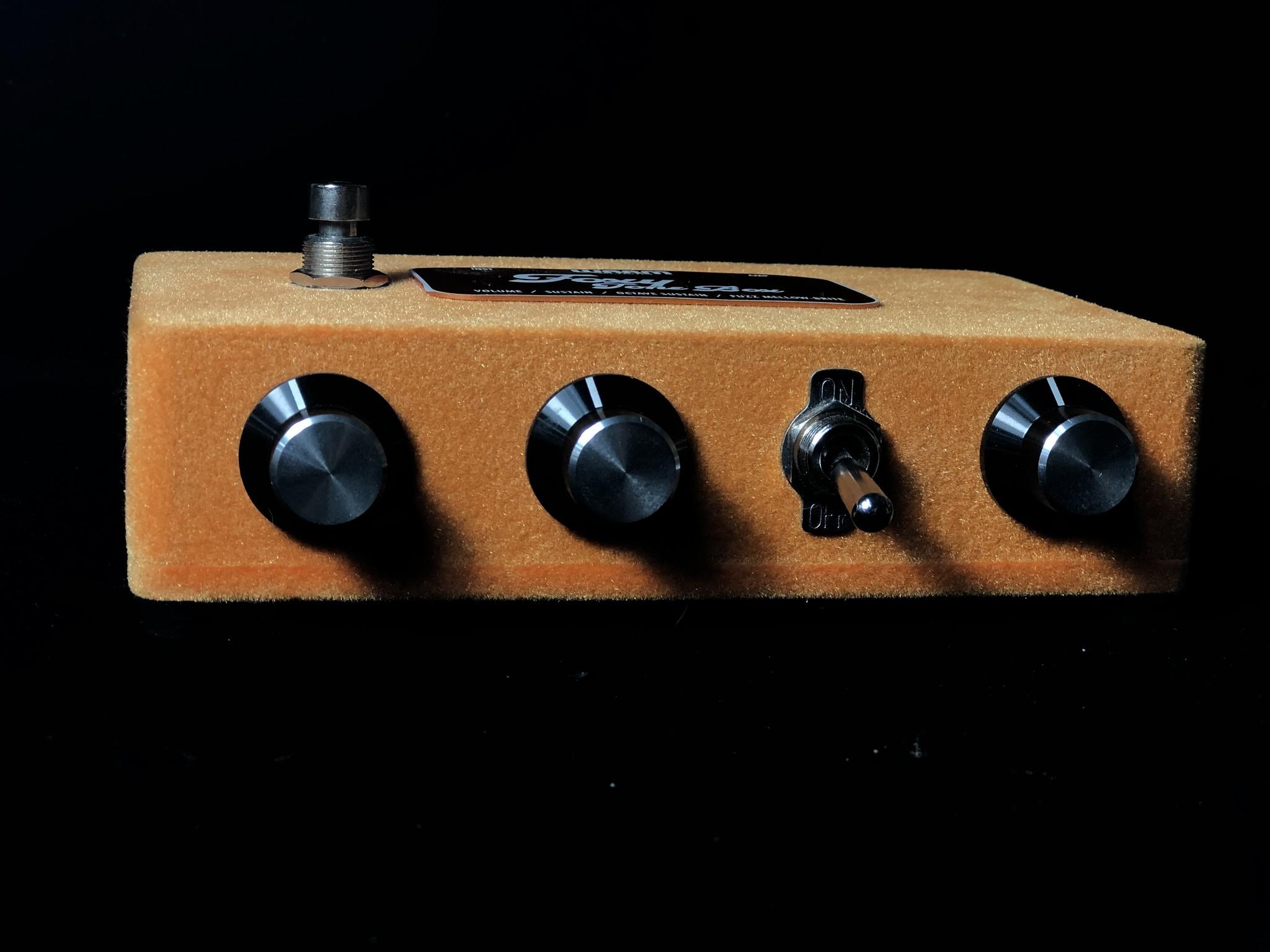 Warm Audio Foxy Tone Box-2