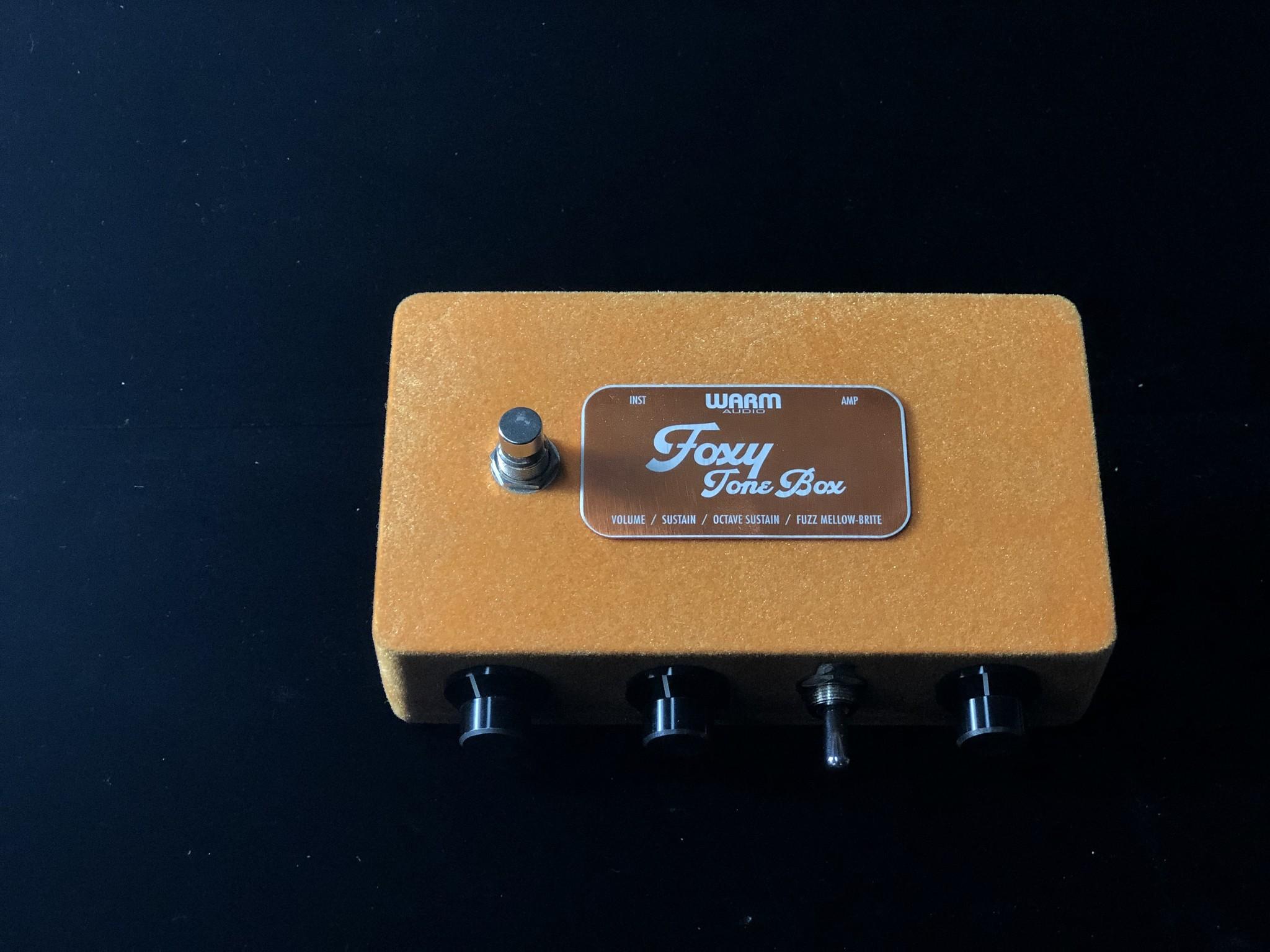 Warm Audio Foxy Tone Box-1