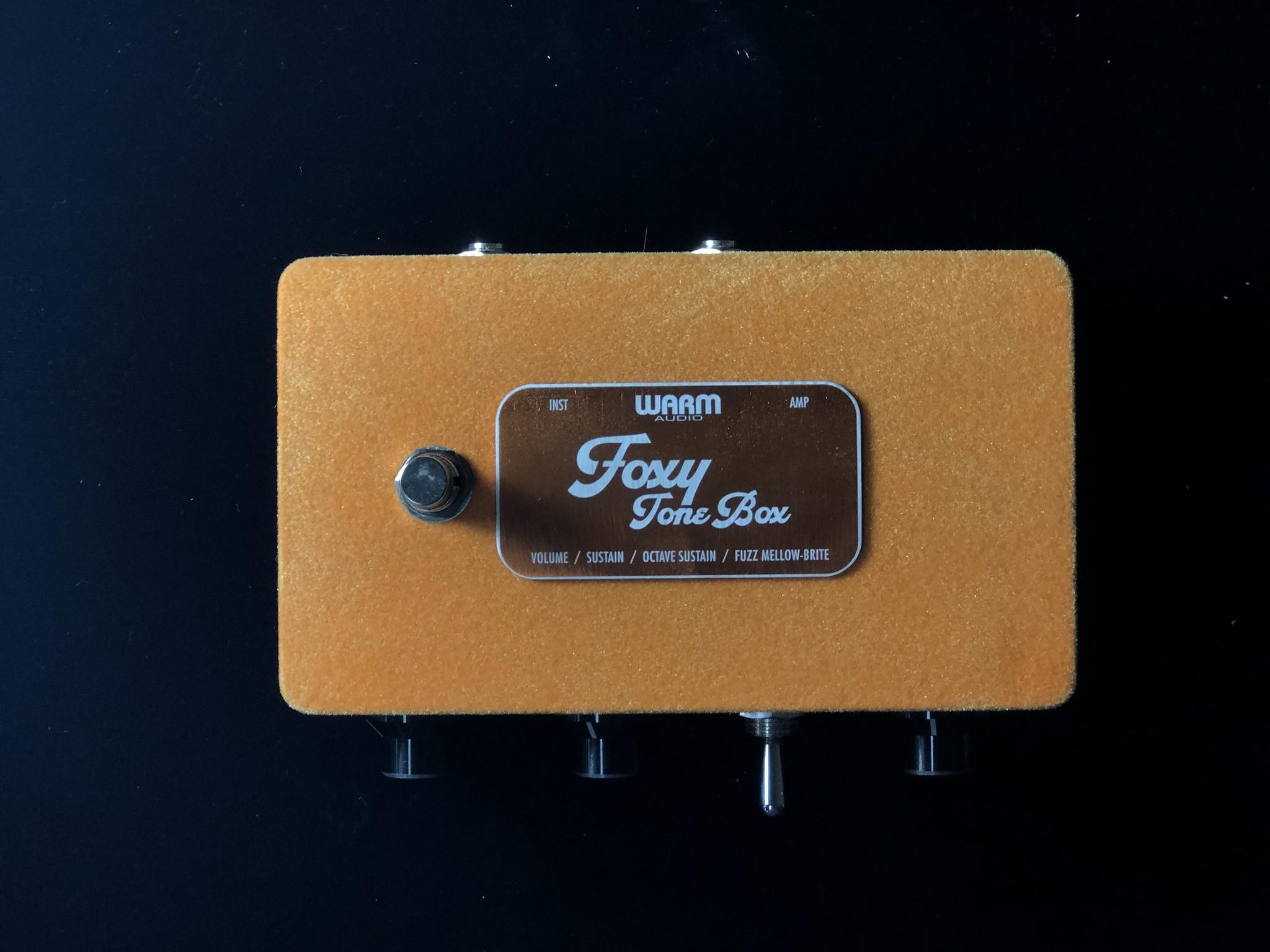 Warm Audio Foxy Tone Box-4