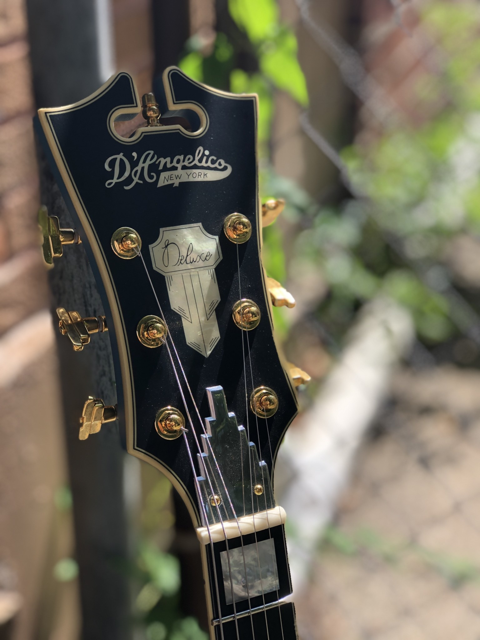 D'Angelico Deluxe DLX-175 Hollowbody - Silver-7