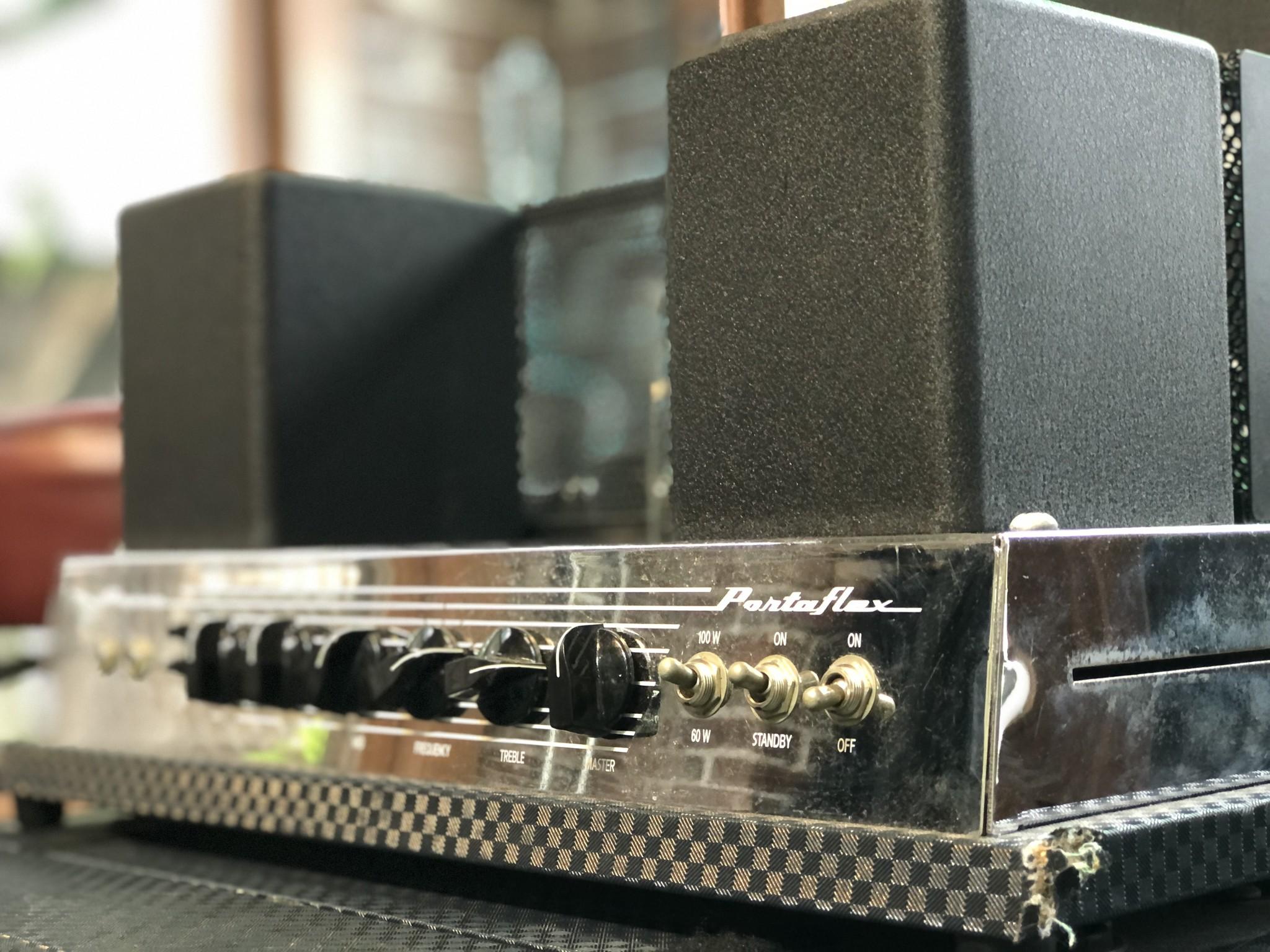 Ampeg B-15R Portaflex Amp and Cabinet-2