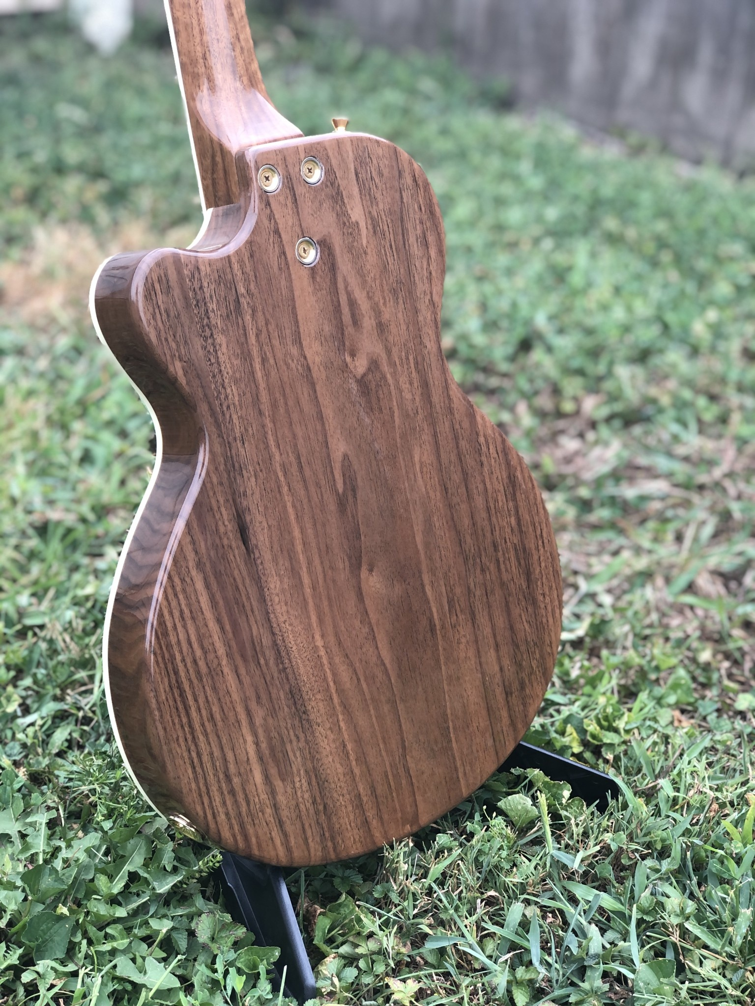 Ness Lutherie Hilldale-9
