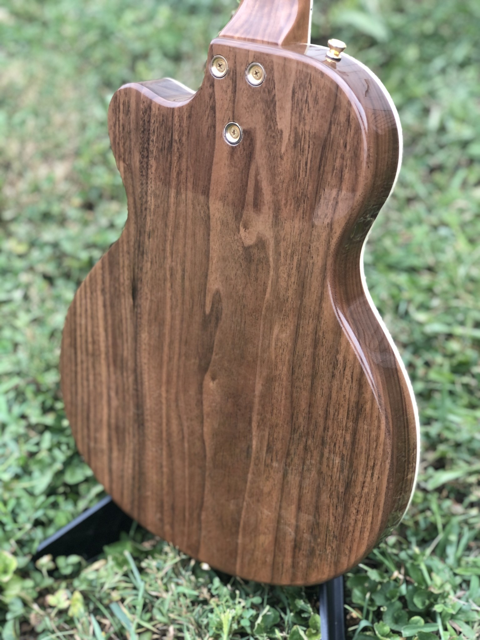 Ness Lutherie Hilldale-10