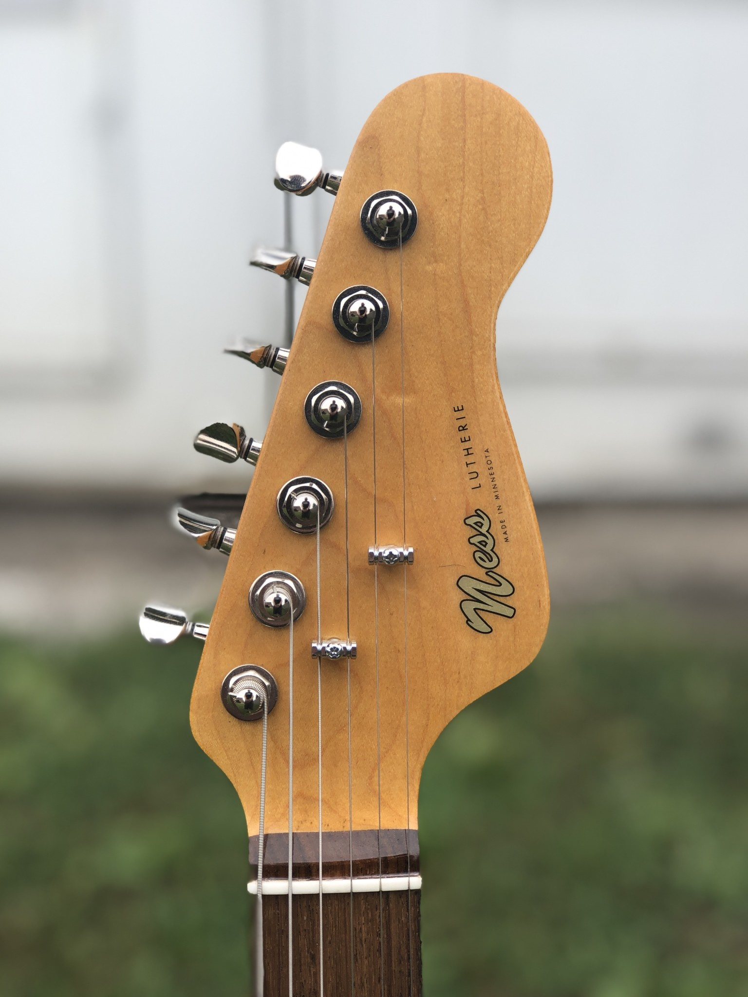 Ness Lutherie Linden-3