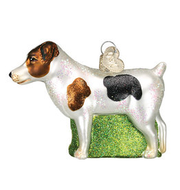 Old World Christmas Jack Russell Terrier