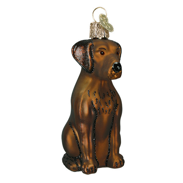 Old World Christmas Chocolate Labrador