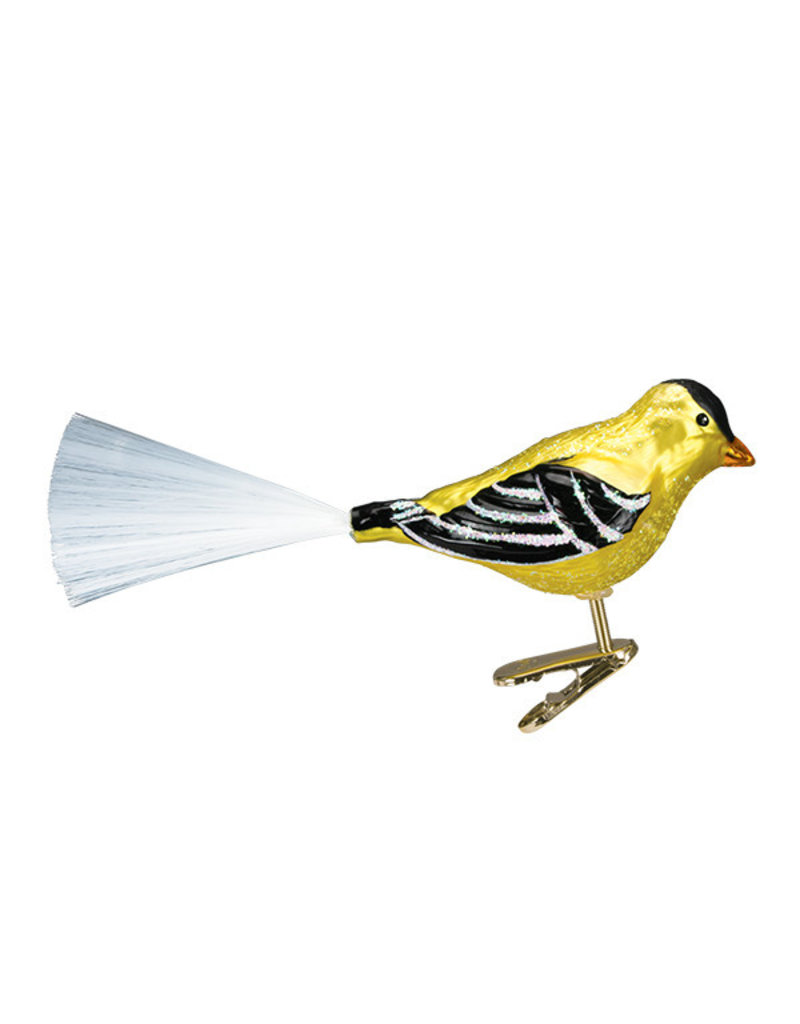 Old World Christmas Western Goldfinch