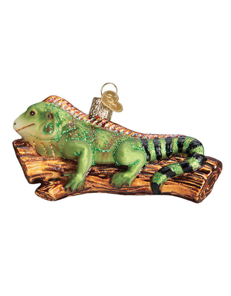 Old World Christmas Iguana