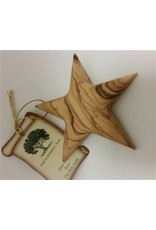 Thick Star Ornament