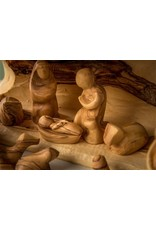 Modern Nativity with Solid Branch Stable Set of 14