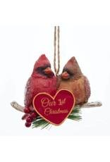 Our 1st Christmas Cardinal