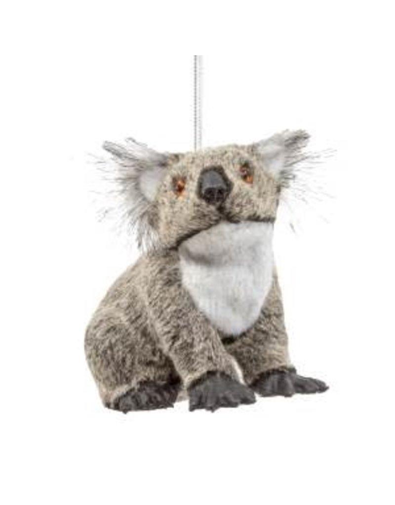 Furry Koala