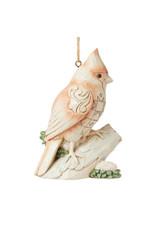 JS Woodland Cardinal on Branch