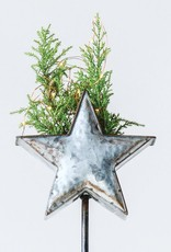 Metal Star Container / Stake