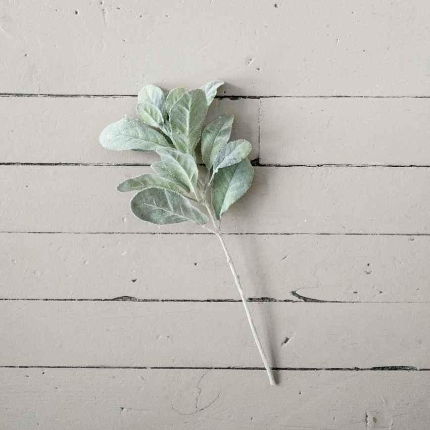 New Soft Green Sage-Like Stem