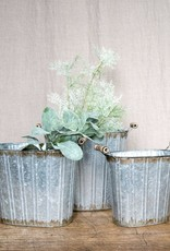Soft Silvery Green Sprig