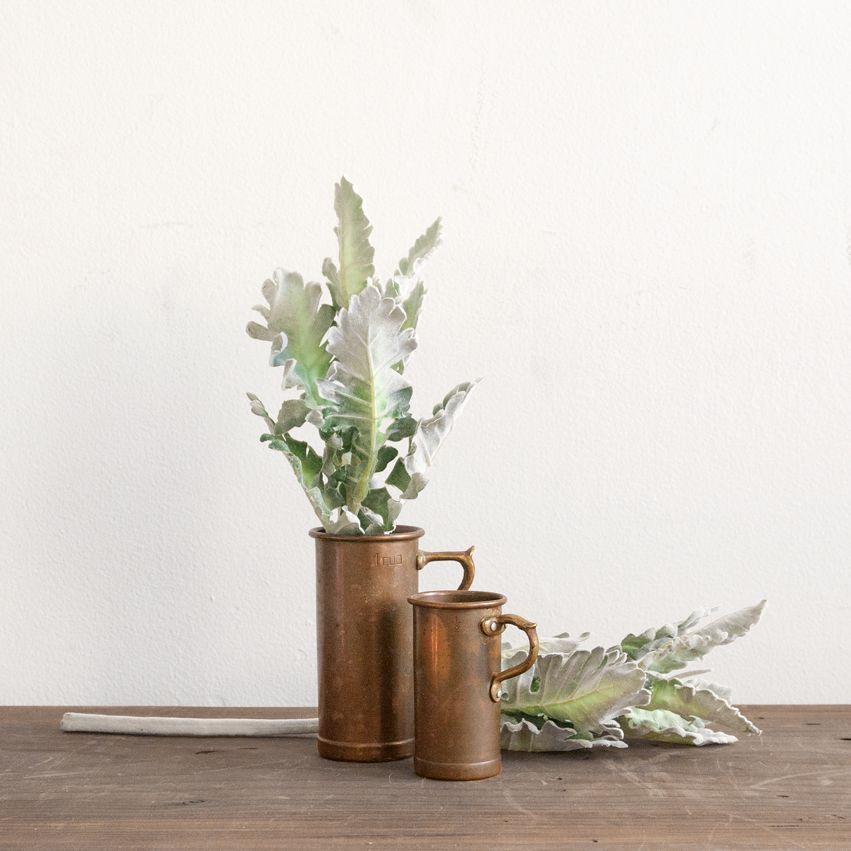 New Soft Green Leafy Stem