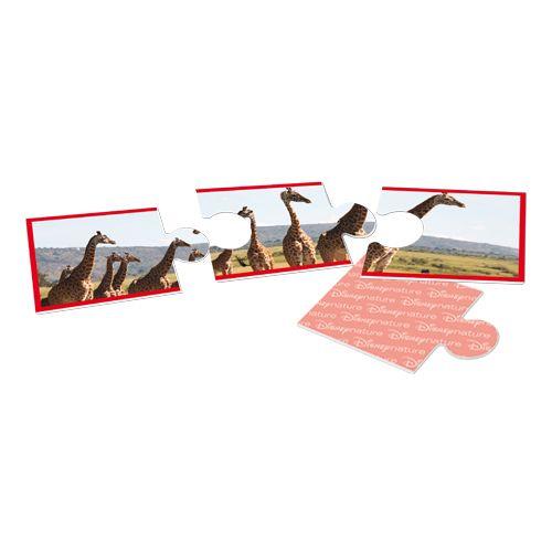 Bioviva Disney nature - Trio puzzle