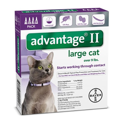 Advantage II for cats large over 9lbs -purple 4pk-