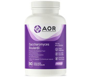 AOR - Saccharomyces Boulardii - 90 V-Caps