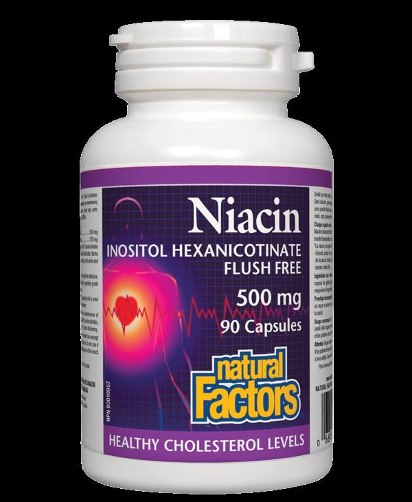 Natural Factors - Niacin 500 mg - 90 Caps