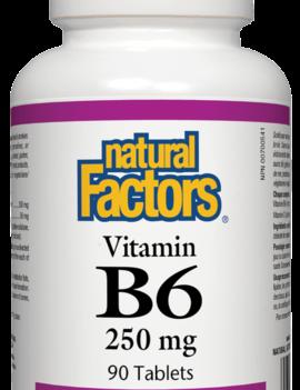 Natural Factors Natural Factors - Vitamin B6 250mg w/ Vitamin C - 90s