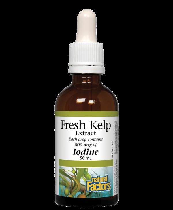 Natural Factors - Fresh Kelp Extract - 50ml