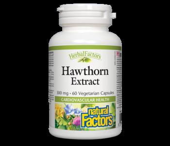 Natural Factors - Hawthorn Extract 300 mg - 60 Caps