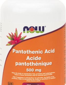 Now Now - Pantothenic Acid 500mg - 250 Caps