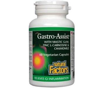 Natural Factors - Gastro-Assist - 60 V-Caps